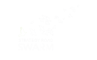 THE STRATEGY ROAD SWARM